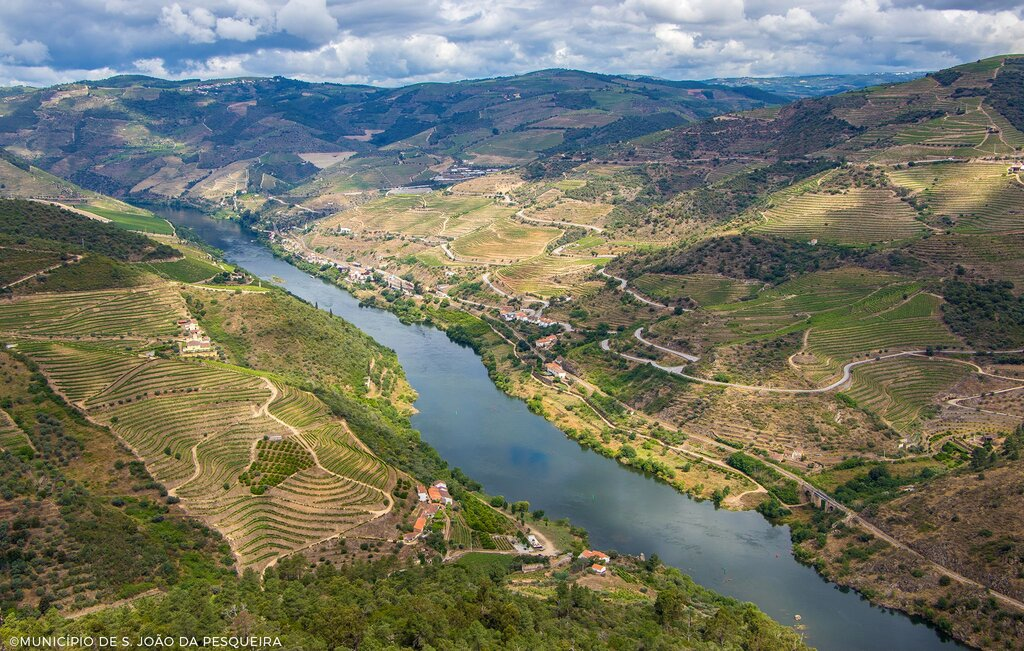 Nagoselo do Douro